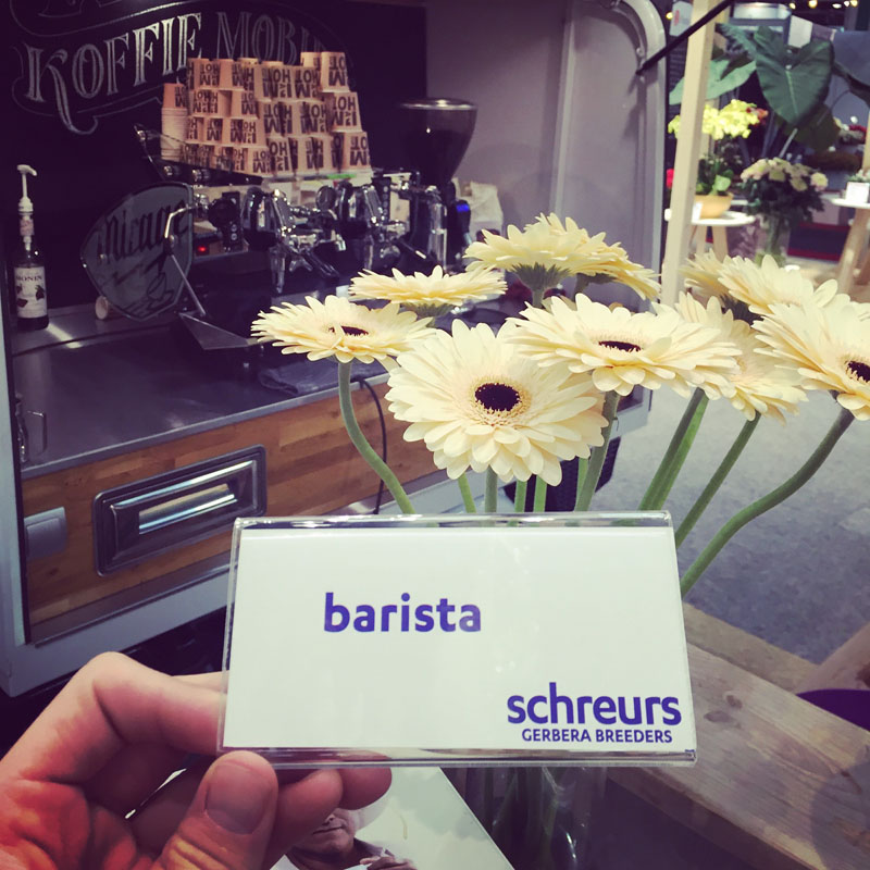 De Barista Gerbera op de trade fair